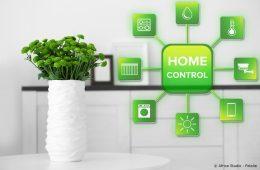 Smart-Home-Grafik und Tischpflanze