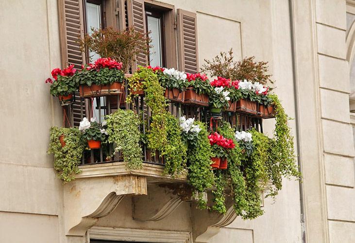 Pflanzenkästen sparen Platz und sehen schön aus.