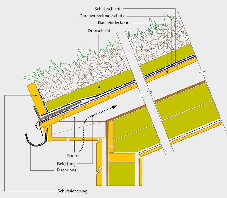 Schema einer Dachbegrünung
