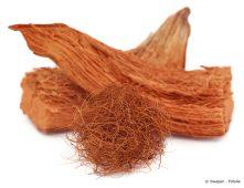 Kokosfasern ganz und als Knäuel