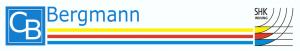 bergmann - entscheider.com