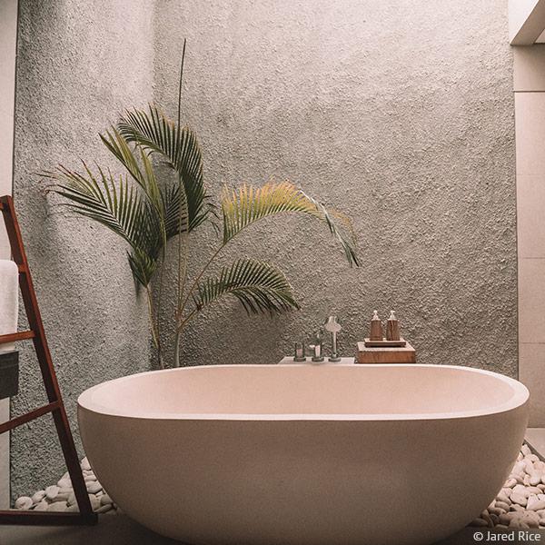 Eine Pflanze macht jedes Bad gemütlicher