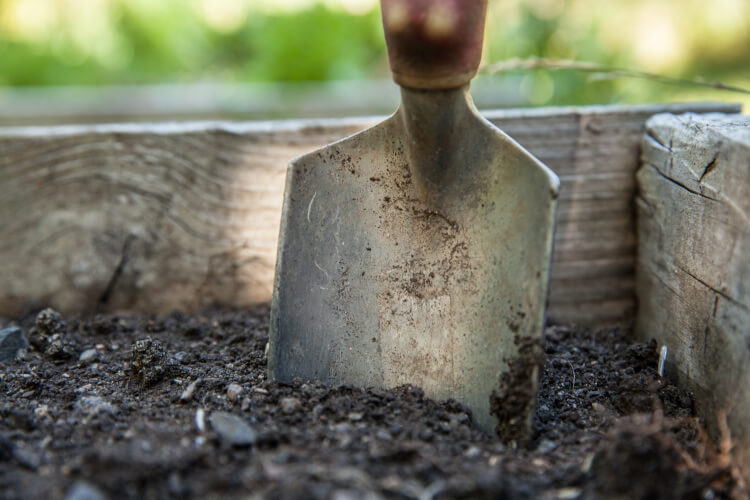 Gartenplanung: Beete anlegen